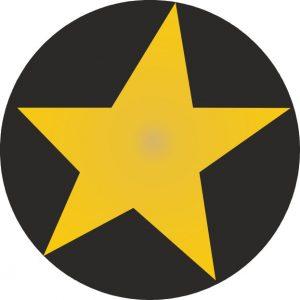 050. Stickers ster zwart – goud