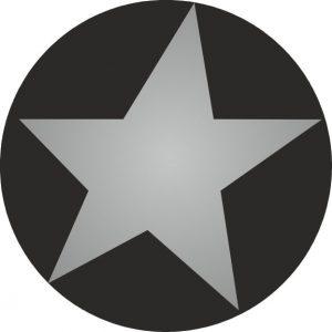 050. Stickers ster zwart – zilver