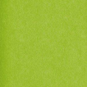 011. Vloeipapier Citrus 50x70cm