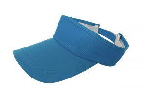 Sonnenblende – Hellblaue Sonnenblende (10 Stk.)